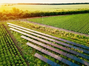 solar-for-agriculture